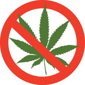 Cannabis interdit